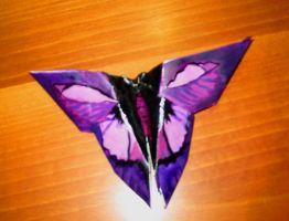 Butterfly effect by Robyduck
