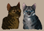 Some Cats by Darkstripe4ever