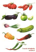 Vegetables 1.1 by saraquarelle
