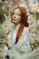 White and red by Girlwithinsomnia