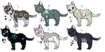More Adoptables. by Alopiidae