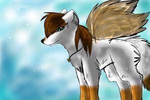 To Cicide c: by Aguawolf