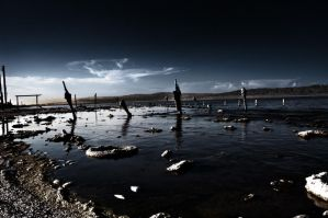 Salton Sea by leographics