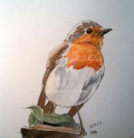Inktober 2015: Day 24 - Robin by SuzanneHole