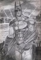 Batman, Arkham Asylum by dtor91