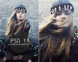 PSD 11 by d-arling