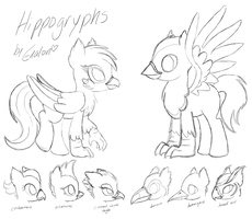 WIP - A visual guide to hippogryphs by Enalon
