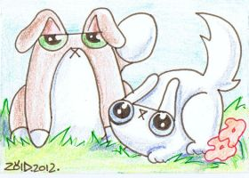 Funny cats easter bunnies by KingZoidLord