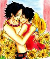 You are my One Piece, for Nastya by Hanatsuki-Ai