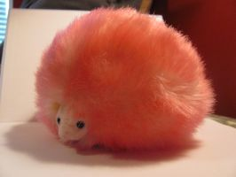 Pygmypuff 2 by Nightmare247Stock