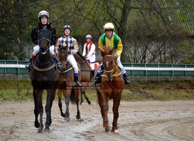 Horse Racing 142 by JullelinPhotography