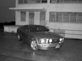 Mustang abandoned Fort Ord by Partywave