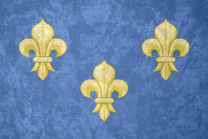 Kingdom of France ~ Grunge Flag (1328 - 1589) by Undevicesimus