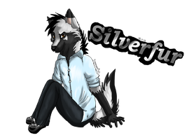 Silverfur in anthro by FireMoon9