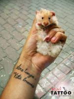 rat and tattoo by RatTatto