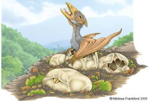 Pterosaur Hatchling by mmfrankford