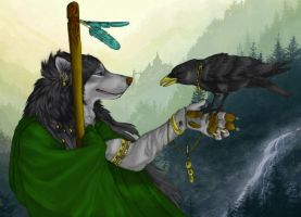 Wolf by hybrian