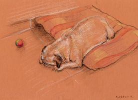 Sleeping pug by Leonid-k