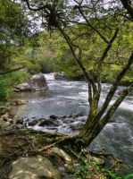 Rio Ponce by papatheo