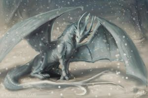 Winter Dragon by Lumaris