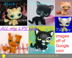 All LPS Cats I have (=3) by Honey-PawStep
