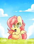 fluttershy by MACKINN7