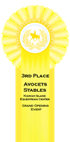 3rd Place Ribbon by S1oane