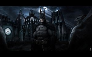 Batman:Arkham Asylum Wp2 by igotgame1075