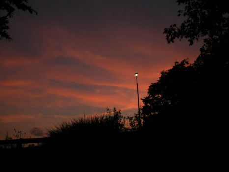 Sillouetted sunset streetlight by Singinchic7