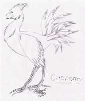 Chocobo by anime-fan-addict