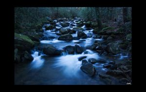River Flow by wolmers