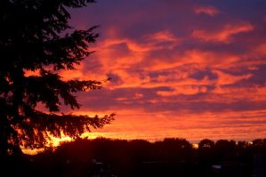 Fire in the Sky by Tanton