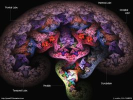 This Is Your Brain On Drugs by psion005