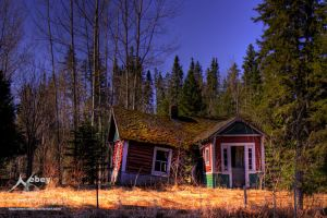 HDR Home Repair Incentive 2 by Nebey