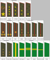 Rank Insignia of the American People's Army by kyuzoaoi