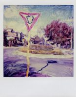 polaroid painting by lloydhughes