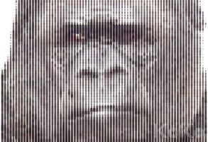 KoKo The Gorilla by GovectorZ