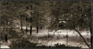 View from A Kitchenwindow by Arawn-Photography
