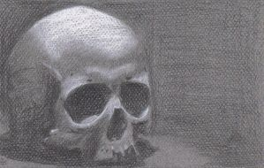 Daily Drawing Day 73 Skull by MidnightHuntingWolf