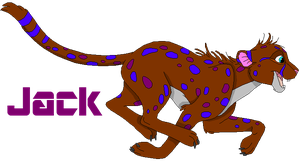 Jack the Cheetah Adopt -CLOSED- by SyvaTheWolf123