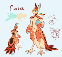 Ansel new ref by red-anteater