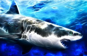 Fractal Shark by debby-saurus