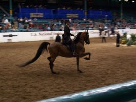 US Nationals - Country 07 by Nyaorestock