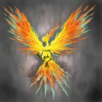 moltres by deadberries