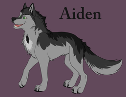 Aiden Sheet (OLD) by NicoleSt