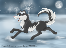 Warpax in Winterland by Leodora