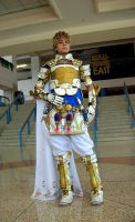 The Prince of Nabradia by sizzing