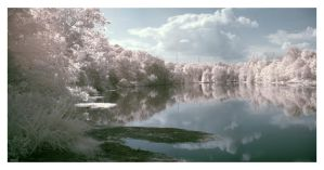 Savannah River IR by thesuper