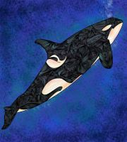 Killer Whale by joejoemuh9