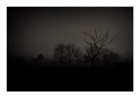 Shapes in the mist III by Ikabe